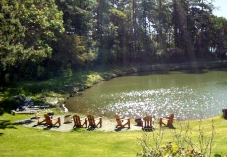 Writer's Pond
